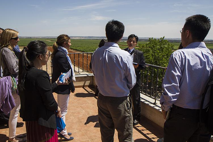 Imagen de la visita a los viñedos de Osborne